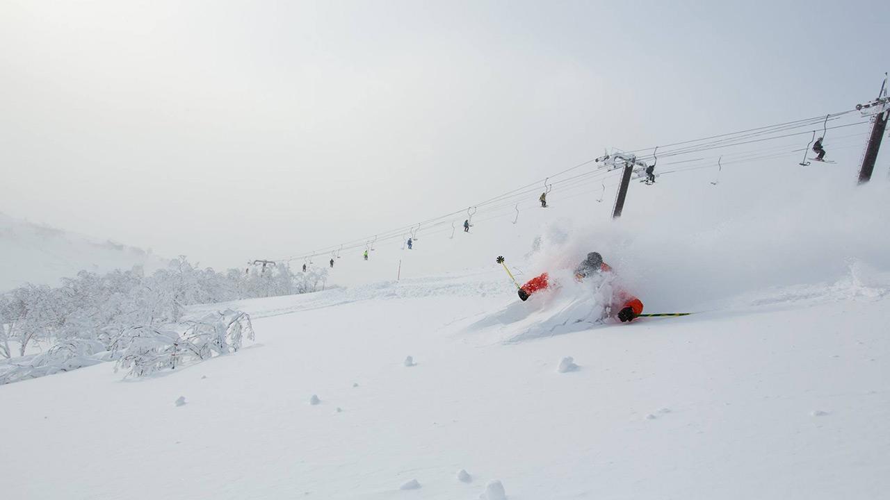 White Christmas forecast for Niseko!