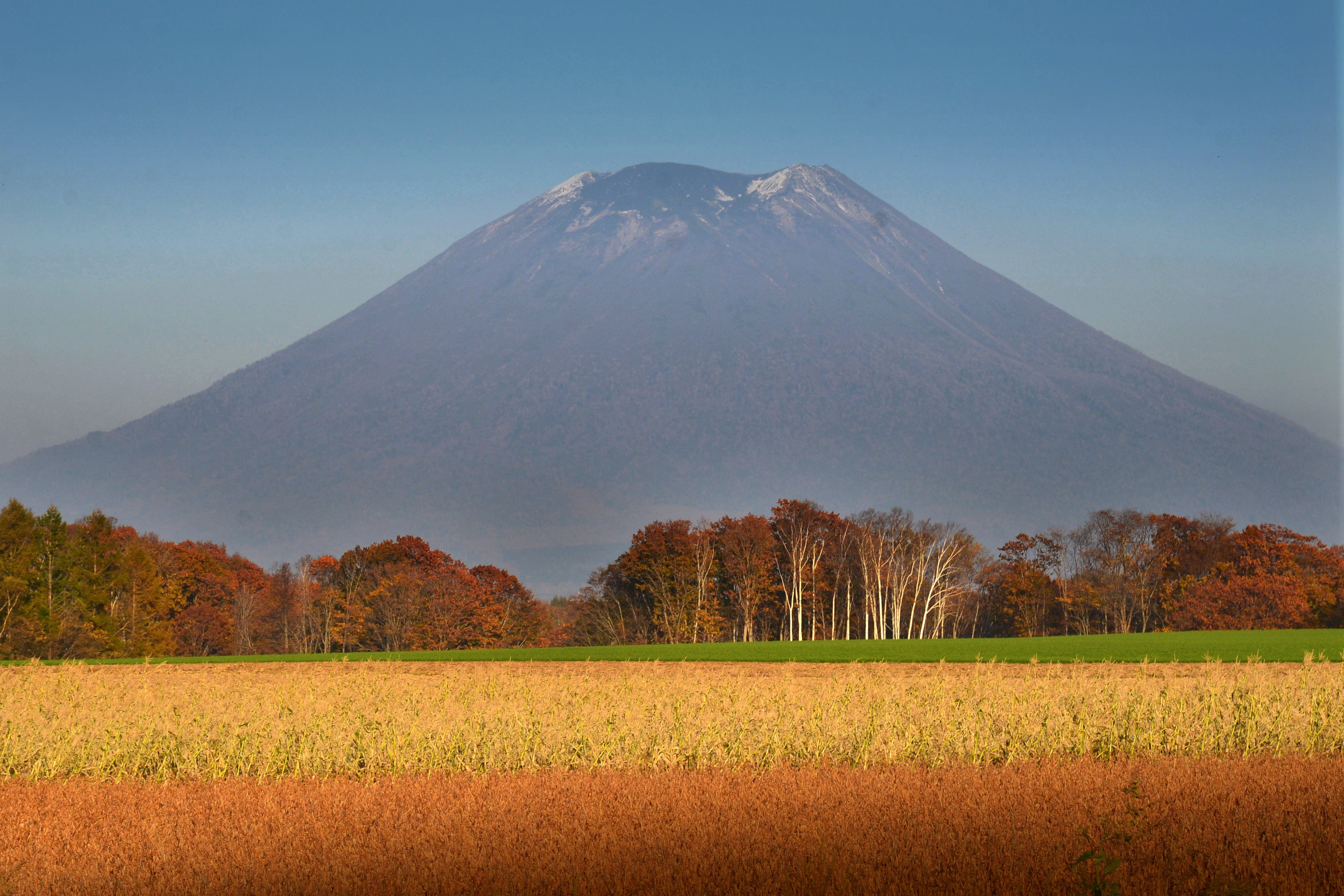 Mt. youtei in Autumn