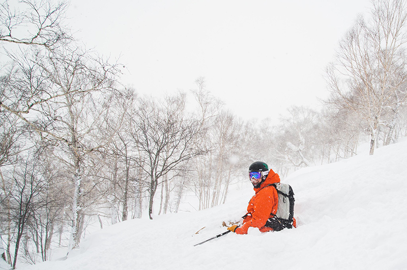 "Niseko's ""very average"" season was pretty good!"