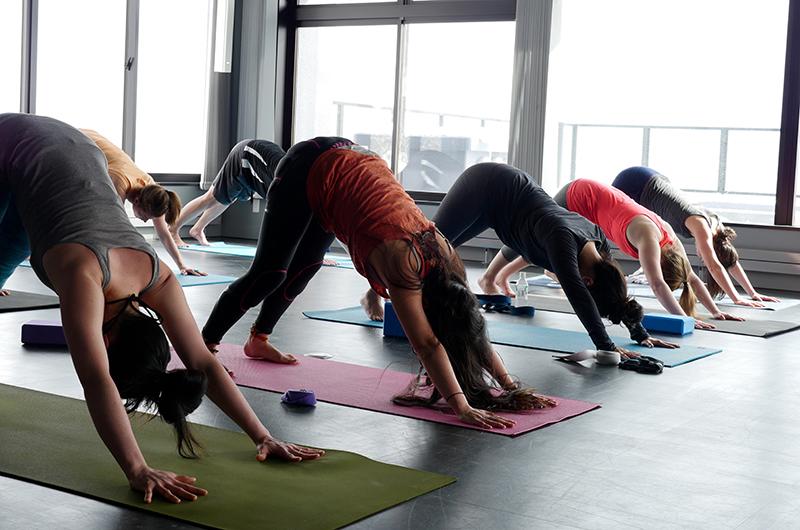 niseko powder yoga winter