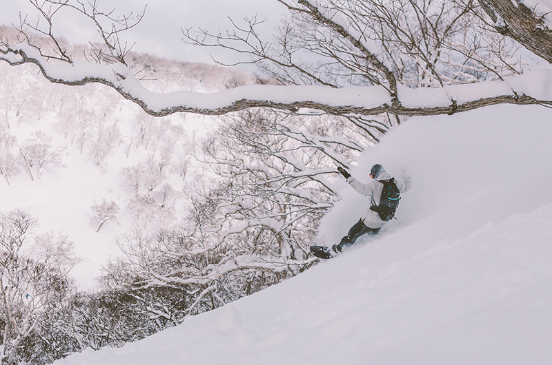 niseko united powder snowboarder