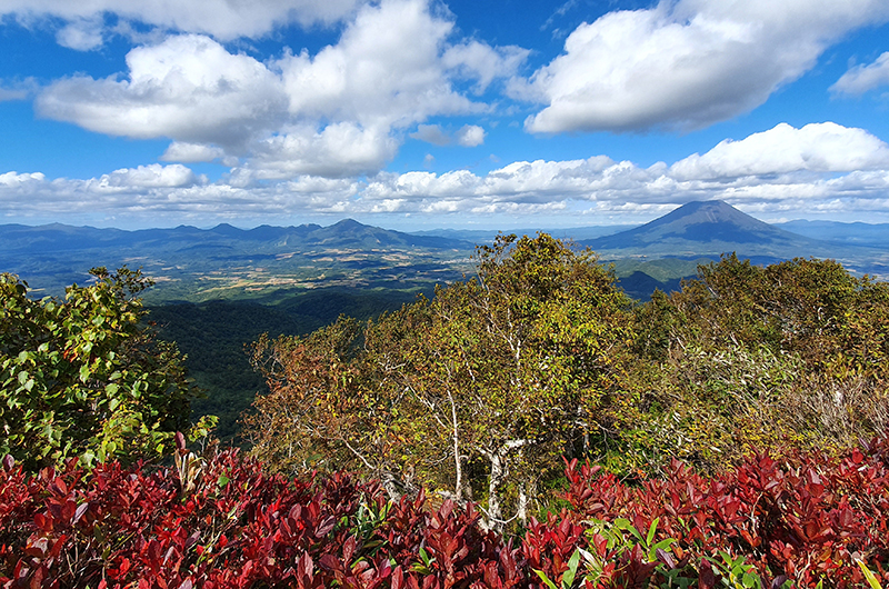 Top 5 reasons why you should visit Niseko in autumn