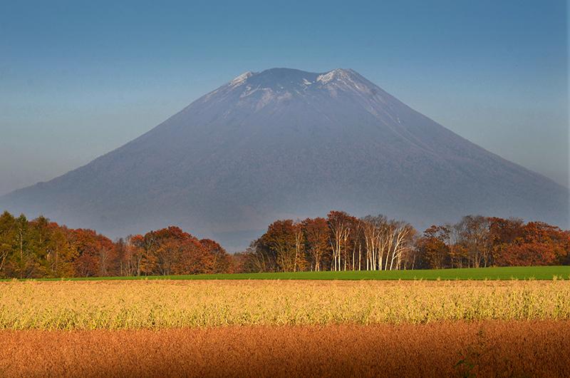 autumn in niseko mt yotei