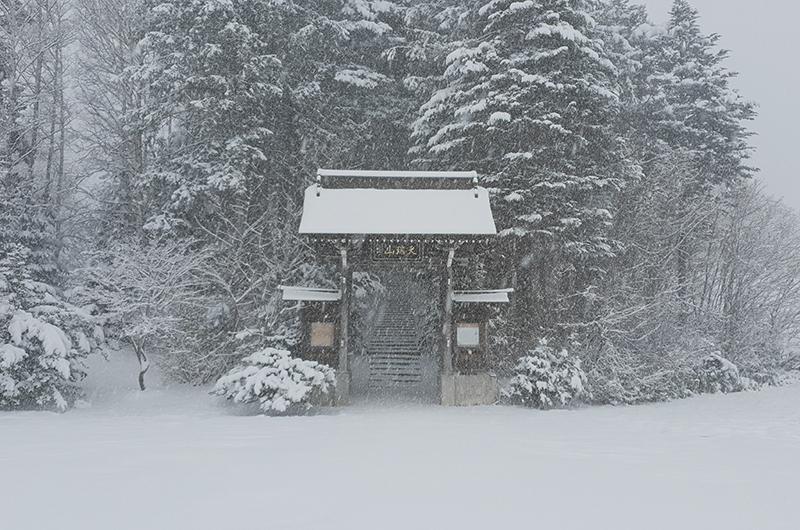 snowy shrine niseko japan
