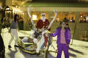 niseko-village-reindeer-christmas