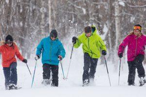 niseko village snowshoe tour