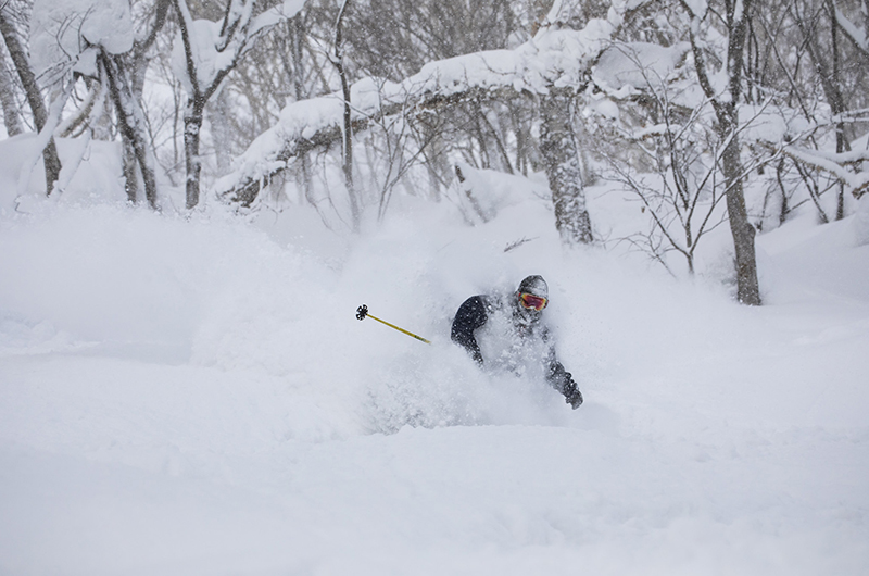 niseko village powder skiing
