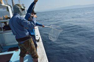 Hanazono Niseko ocean fishing charter