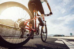 niseko hanazono cycling mountain biking