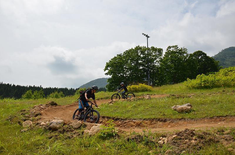 niseko hirafu mountain bike flow trail