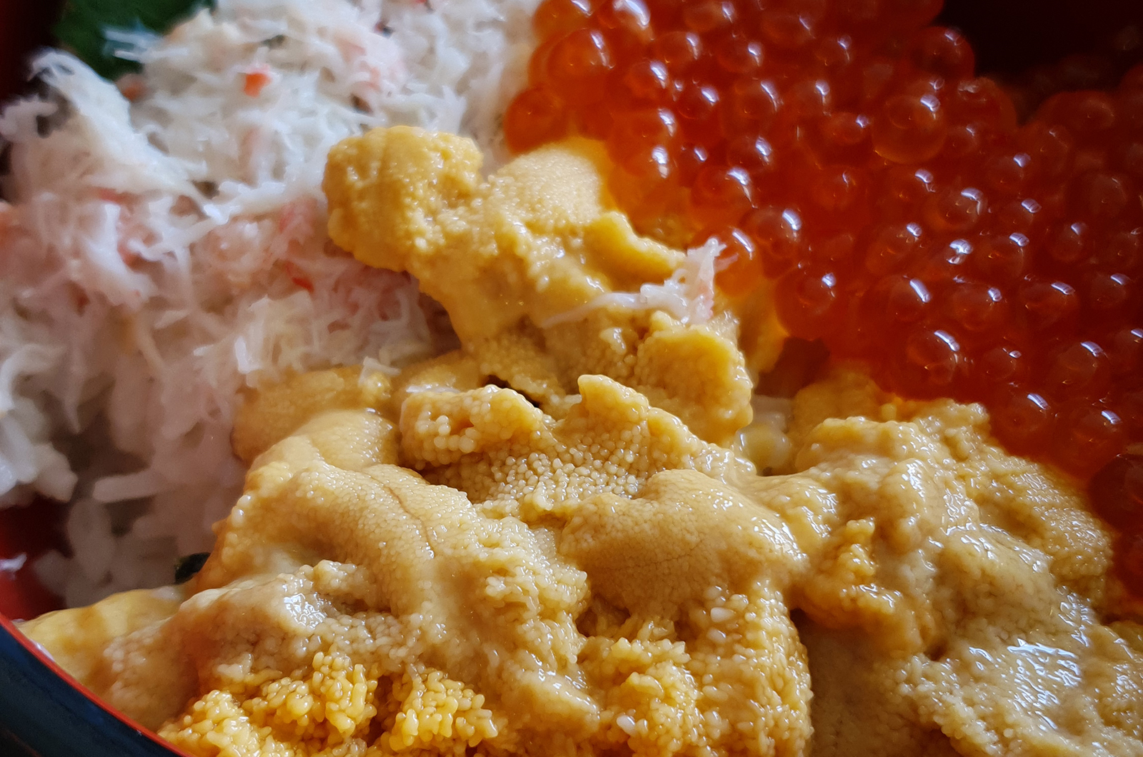 uni sea urchin shakotan hokkaido japan