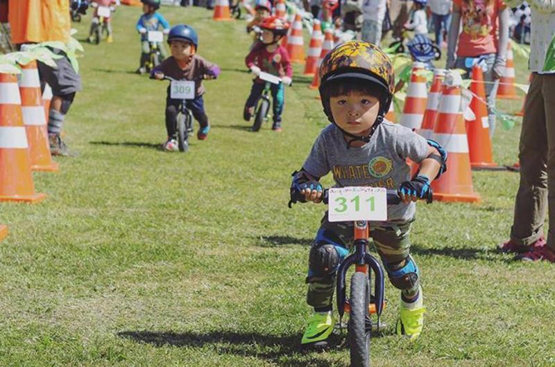 niseko strider enjoy cup cycling