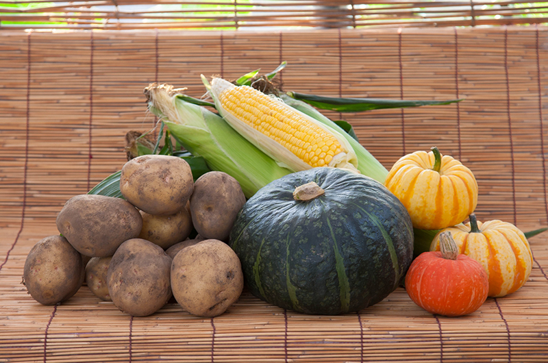 ニセコ秋の収穫 – 秋の味覚を満喫しよう!の画像